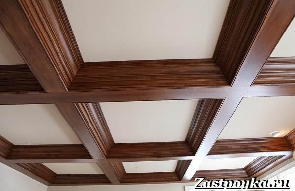 Кессонный-потолок-Описание-особенности-виды-и-монтаж-кессонного-потолка-9