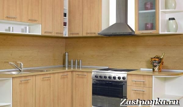 Кухонный-фартук-Описание-особенности-виды-и-цена-кухонных-фартуков-5