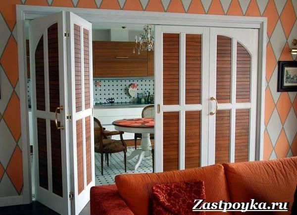 Межкомнатные-двери-гармошка-Описание-виды-и-установка-дверей-гармошка-14