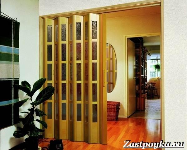 Межкомнатные-двери-гармошка-Описание-виды-и-установка-дверей-гармошка-2