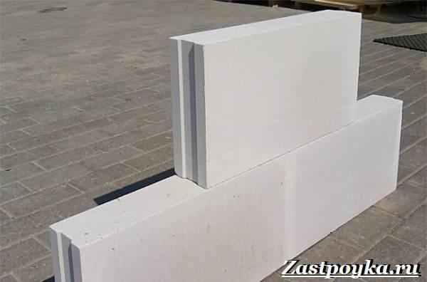 Пазогребневые-блоки-Описание-виды-применение-и-цена-пазогребневых-блоков-3