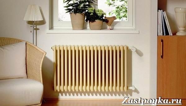 Радиаторы-отопления-Описание-виды-установка-и-цены-радиаторов-отопления-10
