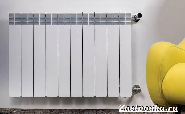 Радиаторы-отопления-Описание-виды-установка-и-цены-радиаторов-отопления-16
