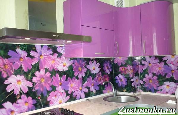 Скинали-живописный-элемент-дизайна-интерьера-и-мебели-15