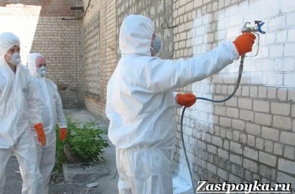 Теплоизоляционная-краска-Свойства-виды-применение-и-цена-теплоизоляционной-краски-5