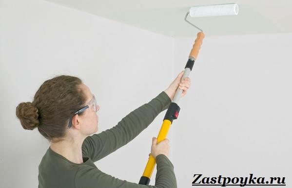 Водоэмульсионная-краска-Описание-особенности-применение-и-цена-водоэмульсионной-краски-11