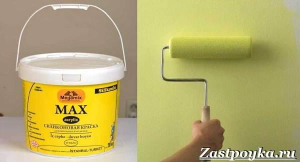Водоэмульсионная-краска-Описание-особенности-применение-и-цена-водоэмульсионной-краски-5